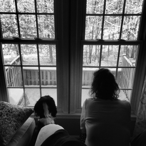 My dog and wife looking out the window at the falling snow. © 2014 Andrew Hitz